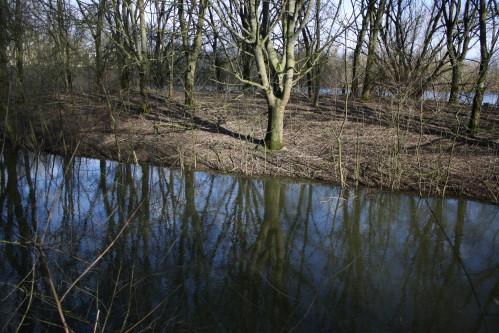 Lac-de-maine-1533