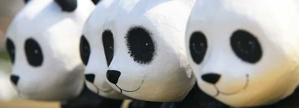 copie-de-c-franck-charel-wwf-1600-pandas-13
