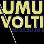 Saumur voltige